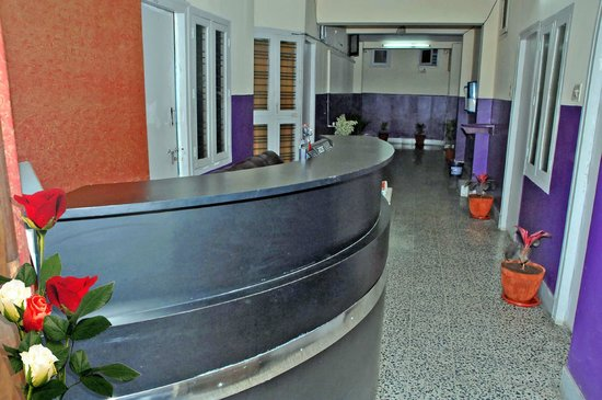 Elegant Guest House: reception on 1st floor