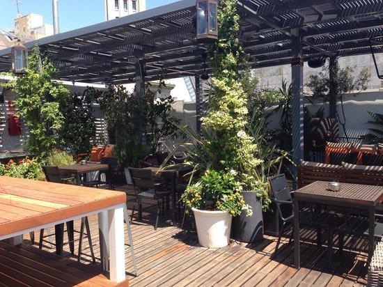 Hotel Pulitzer: Rooftop bar