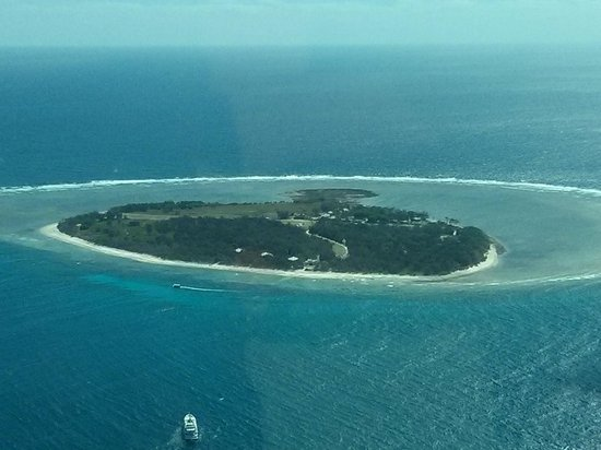 Mantra Crown Towers: Lady Elliot Island (Southern most part of Great Barrier Reef)