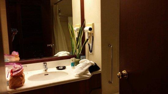 Evergreen Laurel Hotel : Room toilet