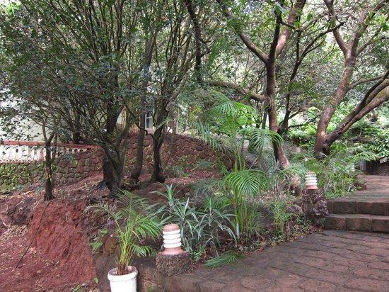 Hotel Shreyas : Way to reception