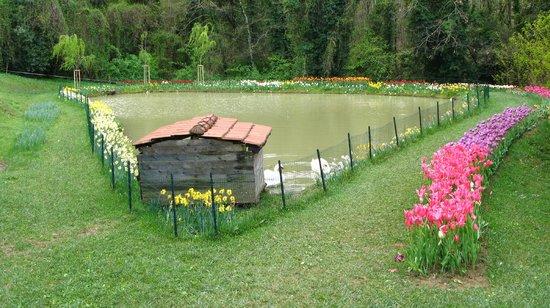 Villa Pescigola