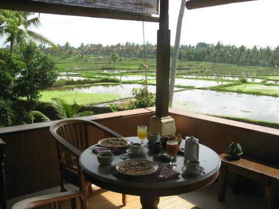 Alam Jiwa: Sicht auf die Reisfelder