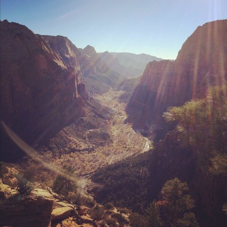 View from the top of Angel's Landing