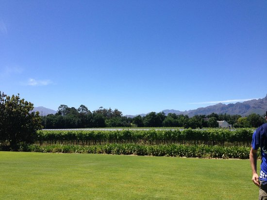 Fransvliet Guest House: View of Franschhoek