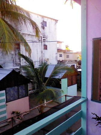 Tropical Oasis Hostel