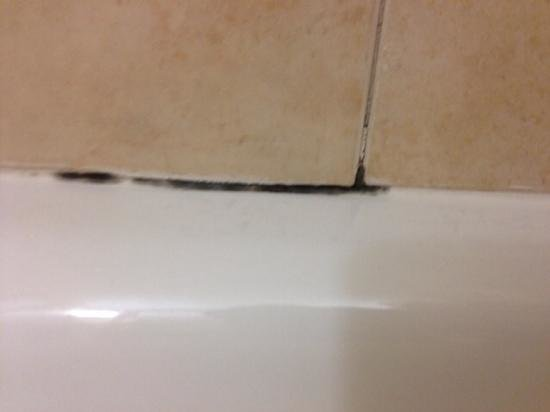 Columbus Marriott: mold!