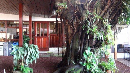 Adventure Park and Hotel Vista Golfo : Inside the lobby and terrace area.