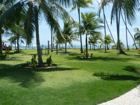 Patachocas Beach Resort: jardines
