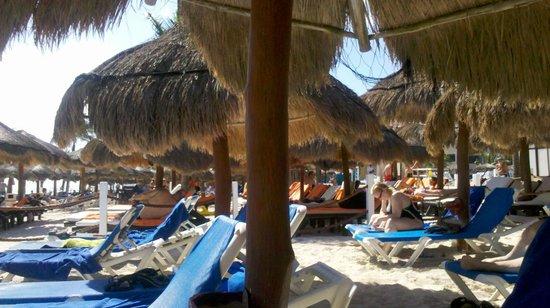 Viva Wyndham Maya: En la playa