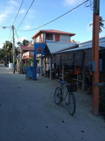 Amor Y Cafe