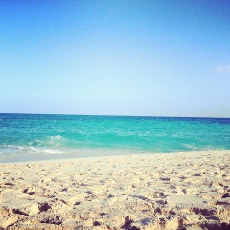 Hotel Riu Palace Paradise Island: Beach front
