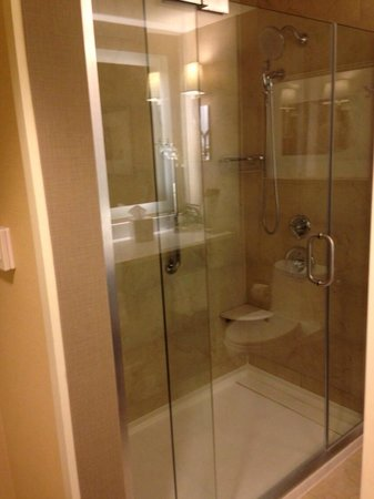 Hilton Inn at Penn: Bathroom (Room 515)