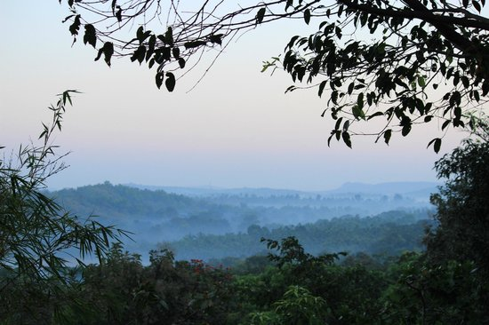 Amrutes' Nisarga Sahavas : View from balcony of Log house