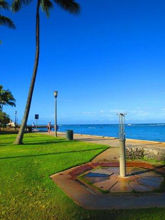 Kapiolani Park : 公園から海