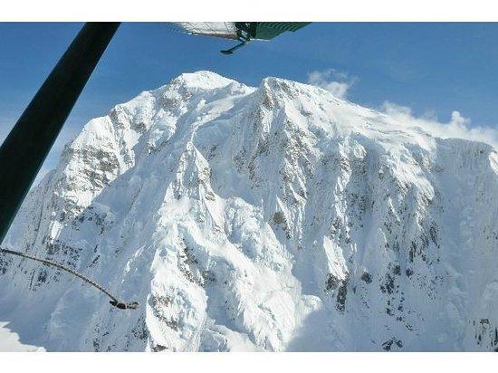 Talkeetna Air Taxi: Denali North face