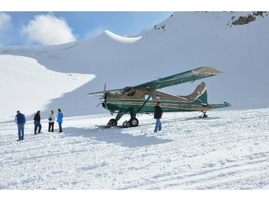 Talkeetna Air Taxi: On the glacier