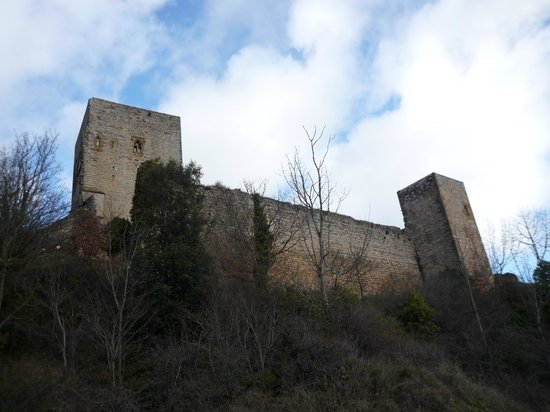 Chateau de Puivert: Кёрибу