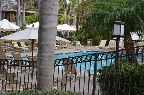Sheraton La Jolla Hotel: Pool area