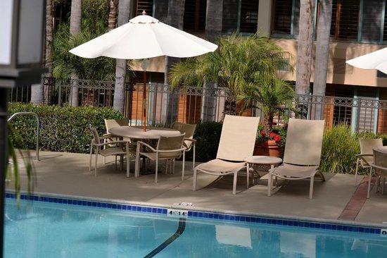 Sheraton La Jolla Hotel: Pool