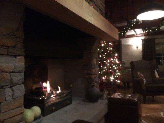 Hotel Restaurant Het Ros van Twente: open fire place - Lobby - Restaurant area