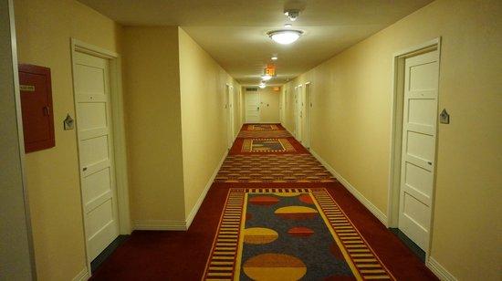 Renaissance Washington, DC Dupont Circle Hotel : Couloirs