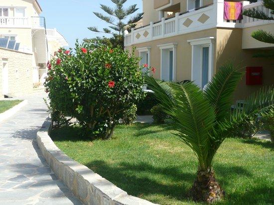 Jo-An Beach Hotel : anvantage bungalo sur le jardin