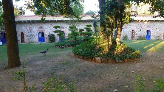 Narain Niwas Palace: Vue de la porte d'une chambre sur jardin