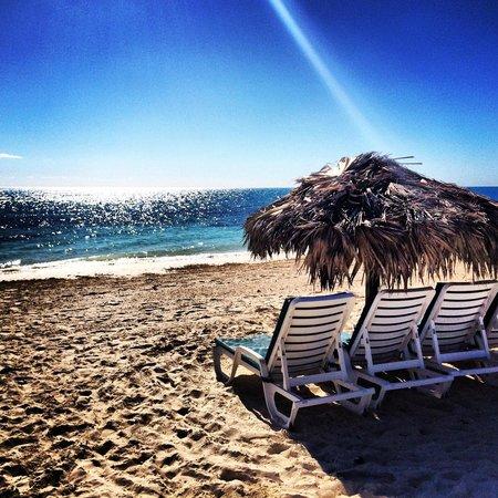 Viva Wyndham Fortuna Beach: The ocean view from the beach