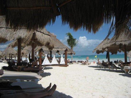 Secrets Maroma Beach Riviera Cancun: beach