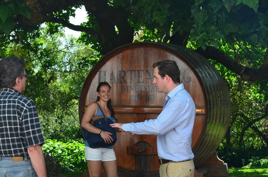 Wine Escapes - Exclusive Cellar & Vineyard Tours : John in action - 1