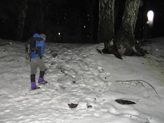 Refugio Neumeyer: Caminhada noturna