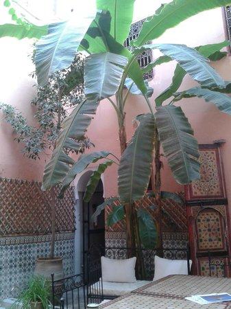 Riad Ineslisa: Courtyard