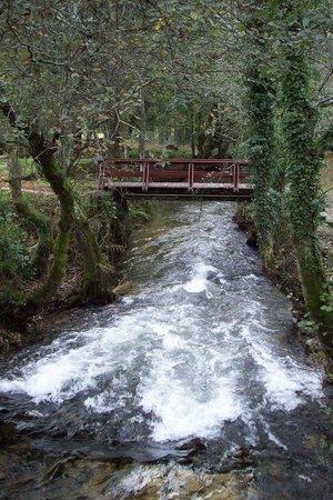 Termas de Cuntis Hotel La Virgen : El rio,con bastante caudal de agua