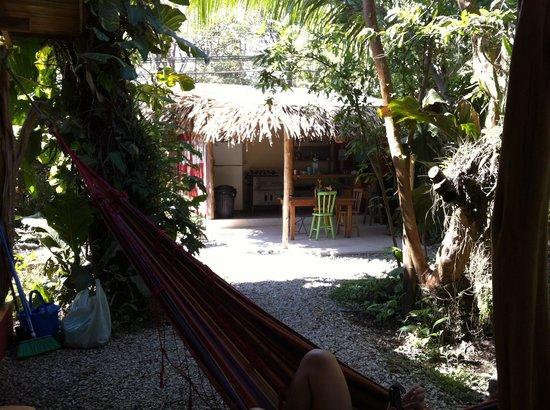 Hotel Meli Melo : Jardin