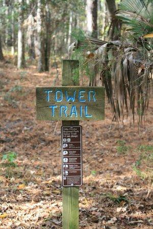 Tillie K. Fowler Regional Park: Regional Park