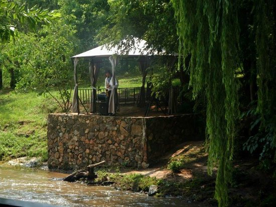 al Fiume Riverside Restaurant : the musician in the other side of the river