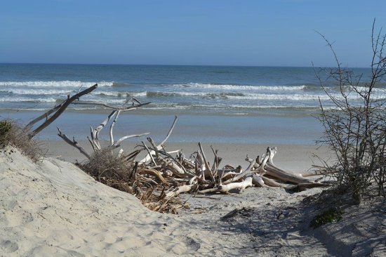 Little Talbot Island State Park: Beach at End of Path