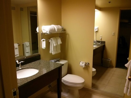 Aquarius Casino Resort: Bathroom