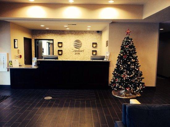 Comfort Inn Saint Clairsville : Christmas 2013