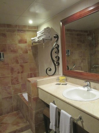 Barcelo Punta Cana : Our bathroom, no tub only shower
