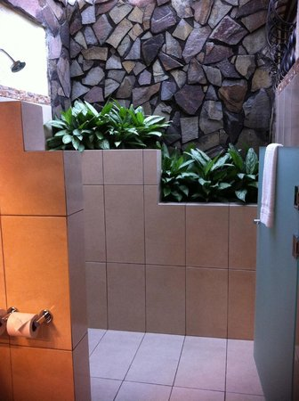 Arenal Springs Resort and Spa: Georgeous shower stall...water from the rain falls in to water the plants