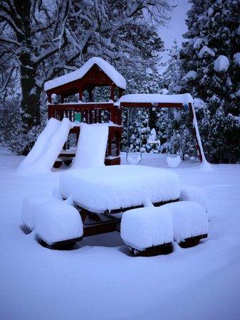 Pine Bank Chalets: Snow!