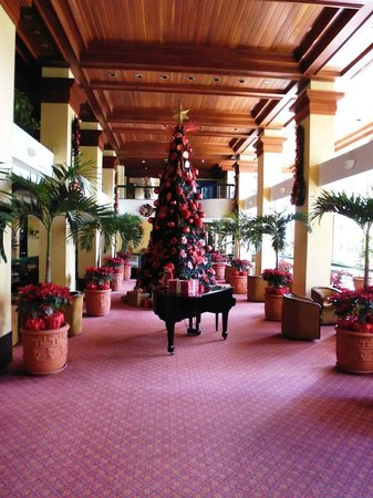 Barcelo San Jose : Christmas decorations in the lobby