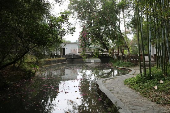 Guangdong Hot Spring Hotel : Tianyichu Ecological Park