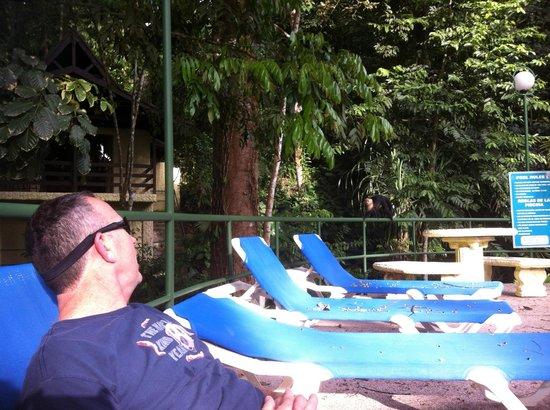 Byblos Resort & Casino: Monkey by the pool