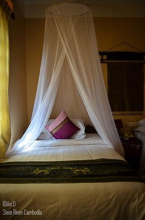 Shining Angkor Boutique Hotel: So comfortable and calm