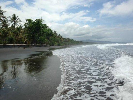 Kelapa Retreat and Spa: Black Sand Beach