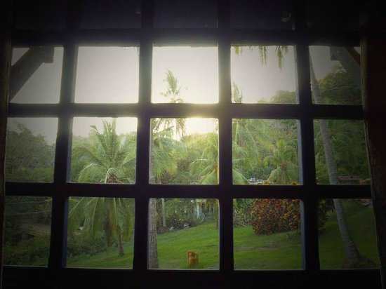 Hotel Los Mangos: View from my room