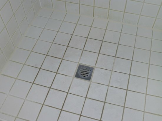 Reef View Hotel: Dirty grout in shower and scumy tiles